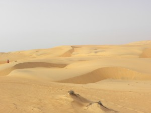 The REAL desert!